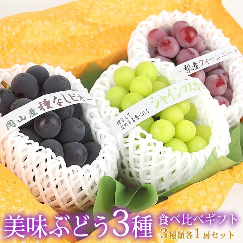 ぶどう フルーツ くだもの 果物【国産 美味 種なし ぶどう 3種 食べ比べ ギフトセット(シャインマスカット 赤ぶどう 黒ぶどう 各1房)】|aino-kajitu