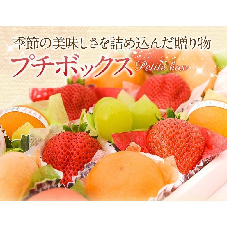 【10月16日〜31日到着】プチボックス【15個入り】フルーツ くだもの 果物 ハロウィン お歳暮 お年賀 七五三|aino-kajitu|02