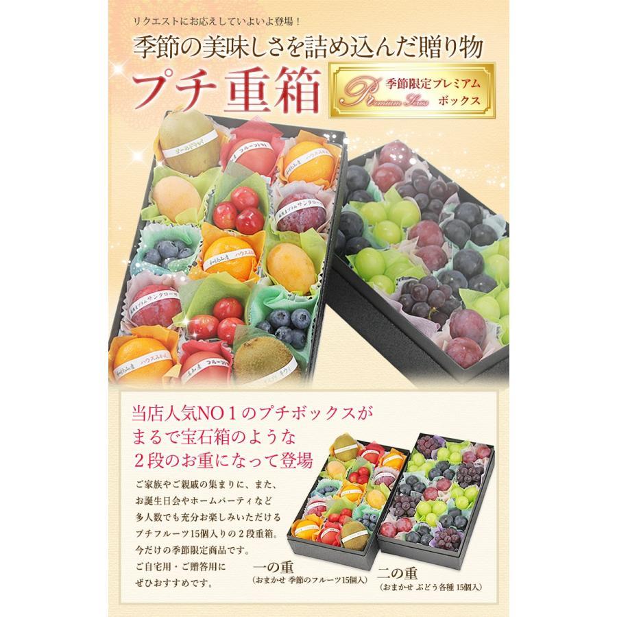 【プチ重箱プレミアム】 FPJ-1(プチフルーツ15個・プチぶどう3〜4種・15個)フルーツ くだもの 果物|aino-kajitu|02