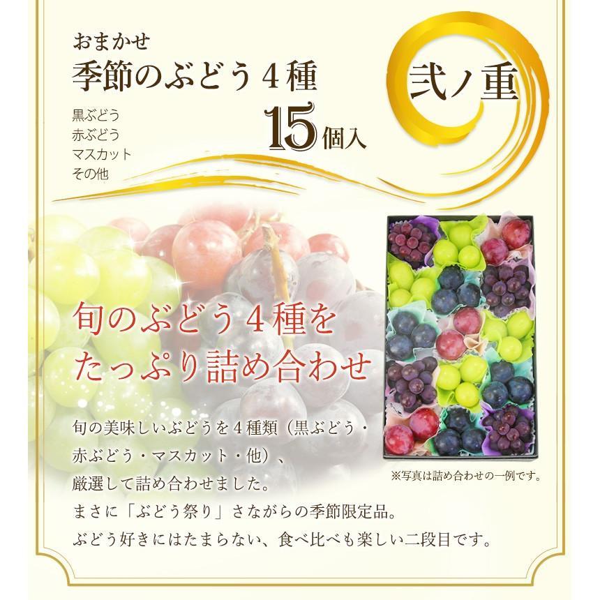 【プチ重箱プレミアム】 FPJ-1(プチフルーツ15個・プチぶどう3〜4種・15個)フルーツ くだもの 果物|aino-kajitu|04