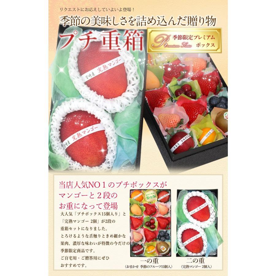 フルーツ くだもの 果物【送料無料】【プチ重箱プレミアム】 FPJ-9(プチフルーツ15個・宮崎産 完熟マンゴー2L〜3L・2個)|aino-kajitu|02