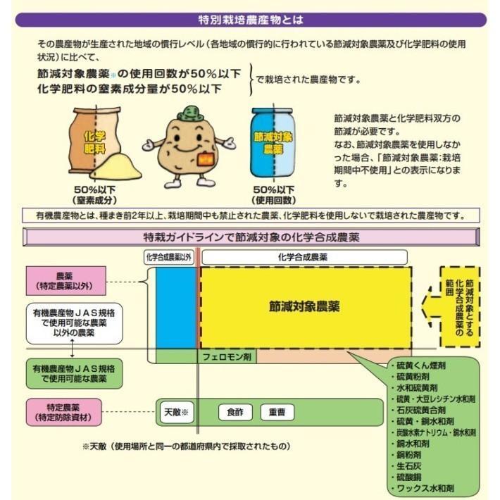 米 お米 5kg×4袋 玄米 2年産新米 会津米物語コシヒカリ 特A一等米使用  送料別料金ふくしまプライド。体感キャンペーン こしひかり 20kg|aizukome|08