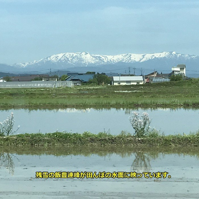 米 お米 3kg 玄米 2年産新米 会津米物語コシヒカリ 特A一等米使用  中部地方までの本州地域送料無料 ふくしまプライド。体感キャンペーン こしひかり|aizukome|20