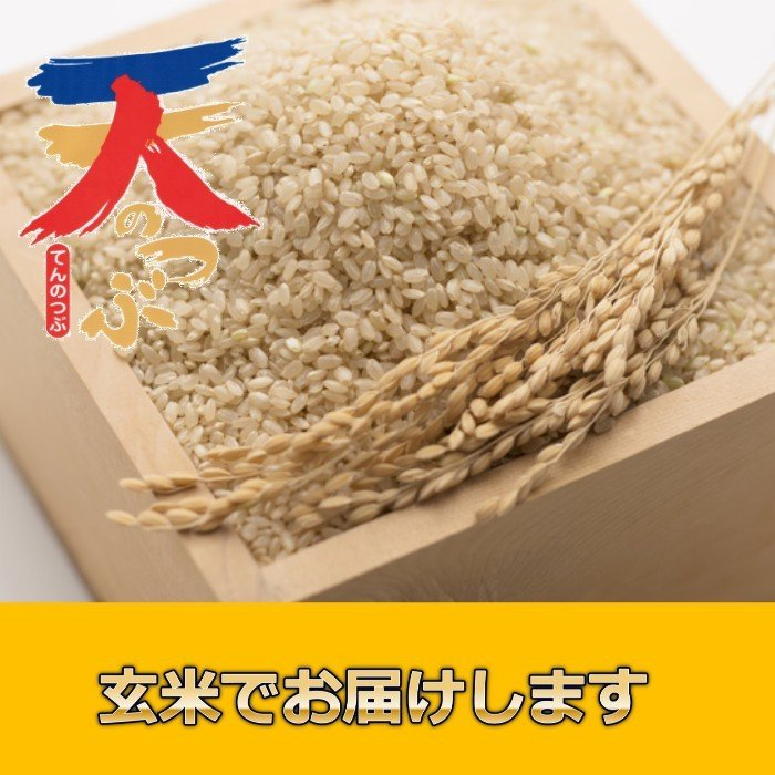 米 お米 3kg 玄米 2年産新米 会津米 天のつぶ Aランク一等米使用   中部地方までの本州地域送料無料|aizukome