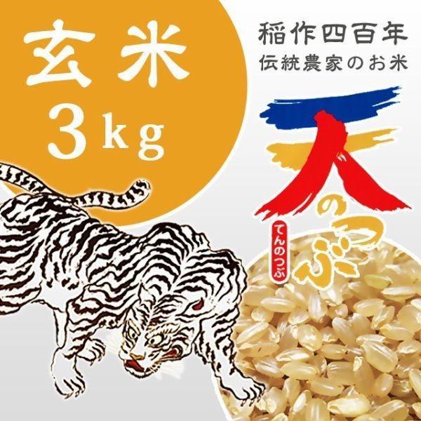 米 お米 3kg 玄米 2年産新米 会津米 天のつぶ Aランク一等米使用   中部地方までの本州地域送料無料|aizukome|02
