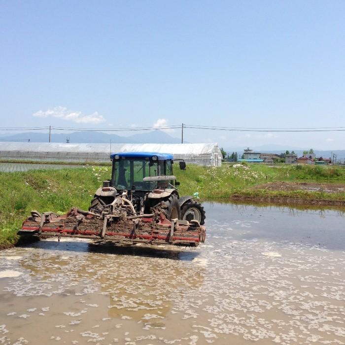 米 お米 3kg 玄米 2年産新米 会津米 天のつぶ Aランク一等米使用   中部地方までの本州地域送料無料|aizukome|11