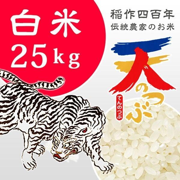 米 お米 5kg×5袋 白米 2年産新米 純精米 会津米 天のつぶ Aランク一等米使用   送料別料金|aizukome|02