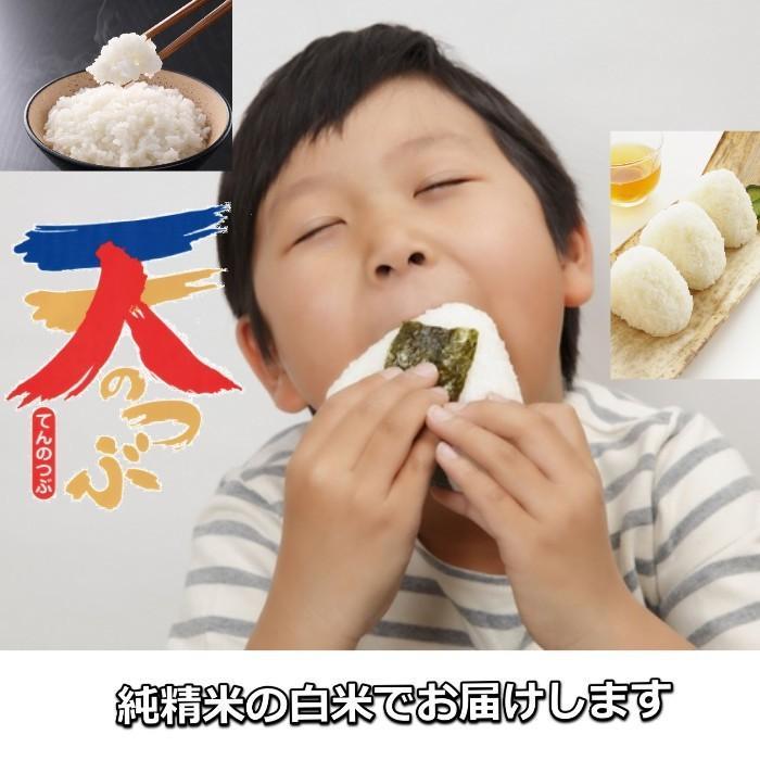 米 お米 3kg 白米 2年産新米 純精米 会津米 天のつぶ Aランク一等米使用 中部地方までの本州地域送料無料 aizukome