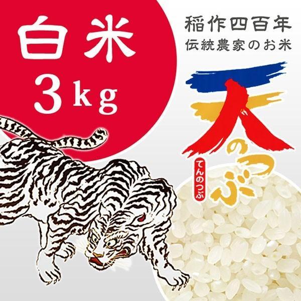 米 お米 3kg 白米 2年産新米 純精米 会津米 天のつぶ Aランク一等米使用 中部地方までの本州地域送料無料 aizukome 02