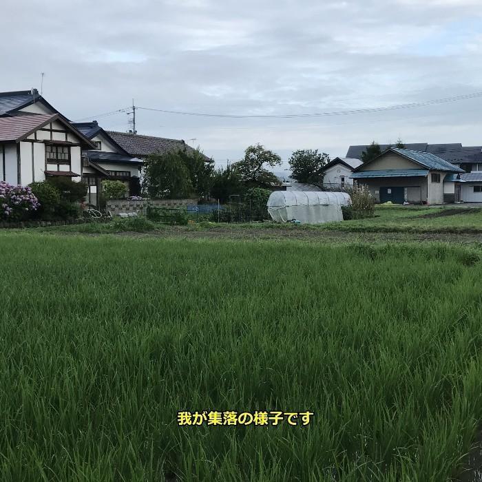 米 お米5kg×2袋 玄米 2年産新米 会津米 コシヒカリ 特A一等米使用  中部地方まで送料無料 ふくしまプライド。体感キャンペーン こしひかり 10kg|aizukome|20