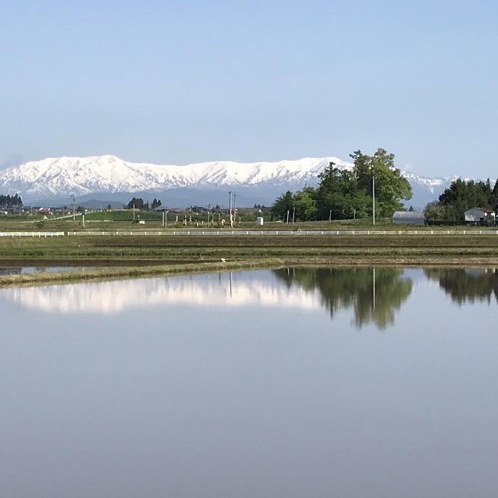 米 会津二色米 5kg×2 玄米 2年産新米 会津米 コシヒカリ+ひとめぼれ 中部地方までの本州地域送料無料|aizukome|18