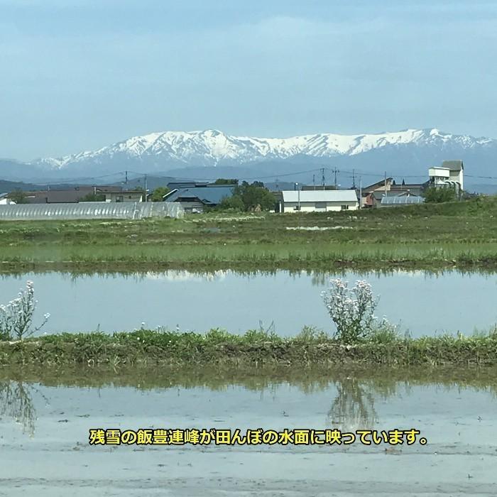 米 会津二色米 5kg×2 玄米 2年産新米 会津米 コシヒカリ+ひとめぼれ 中部地方までの本州地域送料無料|aizukome|19