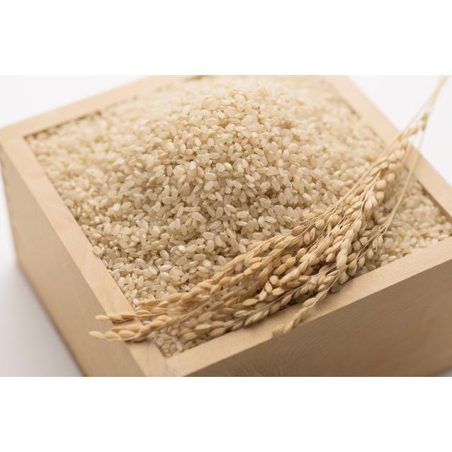 米 会津二色米 5kg×2 玄米 2年産新米 会津米 コシヒカリ+ひとめぼれ 中部地方までの本州地域送料無料|aizukome|03