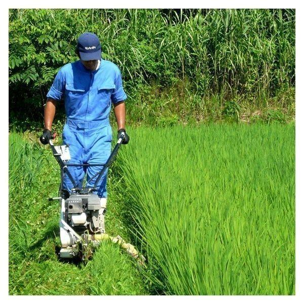米 会津二色米 5kg×2 玄米 2年産新米 会津米 コシヒカリ+ひとめぼれ 中部地方までの本州地域送料無料|aizukome|10