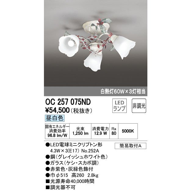 オーデリック ODELIC OC257075ND LEDシャンデリア ポイント5倍 ポイント5倍