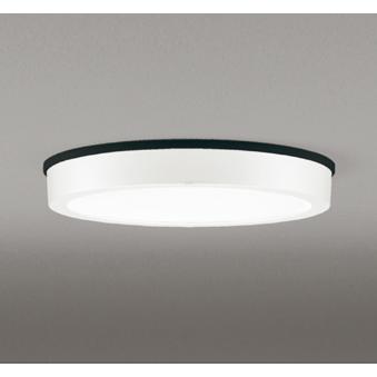 OG254807 オーデリック照明器具 ポーチライト 軒下用 LED