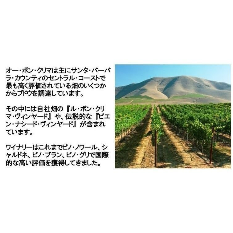 (ロマネ コンティ(DRC)に間違えられたワイナリー 赤ワイン) オー ボン クリマ イザベル ピノ ノワール カリフォルニア 2017年|akemibeautyshop|06