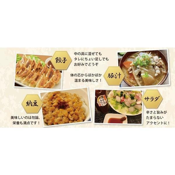 即納 富田商店 唐辛子にんにく 2個セット 150g 便利なチューブパッケージ とうがらし ニンニク 万能調味料 熟成 手作り 美味い 福島 ご当地 グルメ akibamart 05