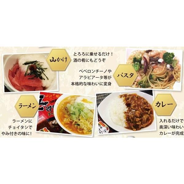 即納 富田商店 唐辛子にんにく 2個セット 150g 便利なチューブパッケージ とうがらし ニンニク 万能調味料 熟成 手作り 美味い 福島 ご当地 グルメ akibamart 06