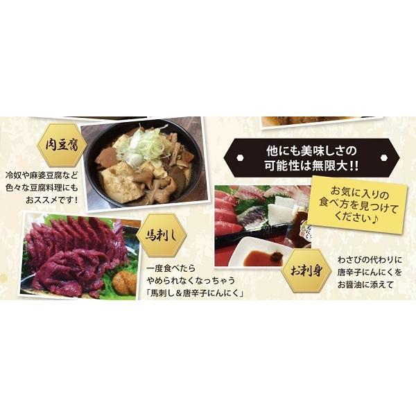 即納 富田商店 唐辛子にんにく 2個セット 150g 便利なチューブパッケージ とうがらし ニンニク 万能調味料 熟成 手作り 美味い 福島 ご当地 グルメ akibamart 08
