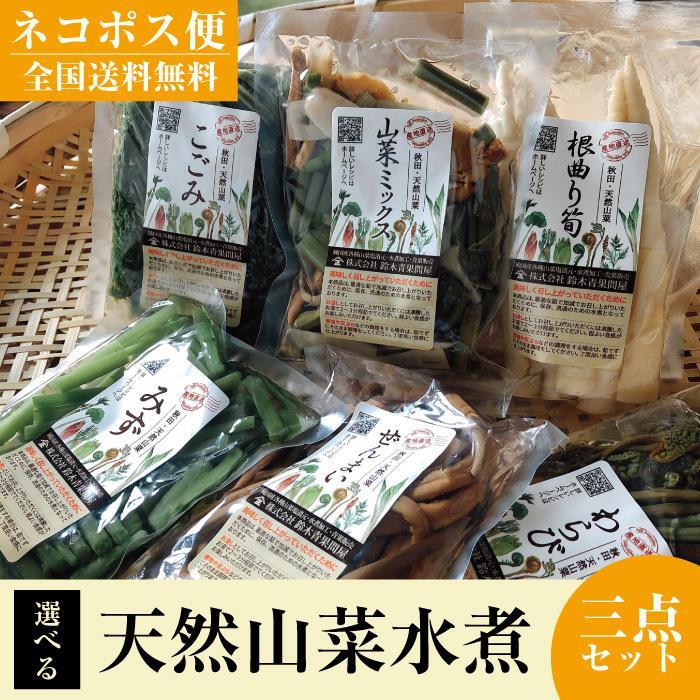 秋田 スーパーセール 天然山菜 水煮 選べる3パック 簡単調理 お洒落 送料無料 鈴木青果問屋 謹製