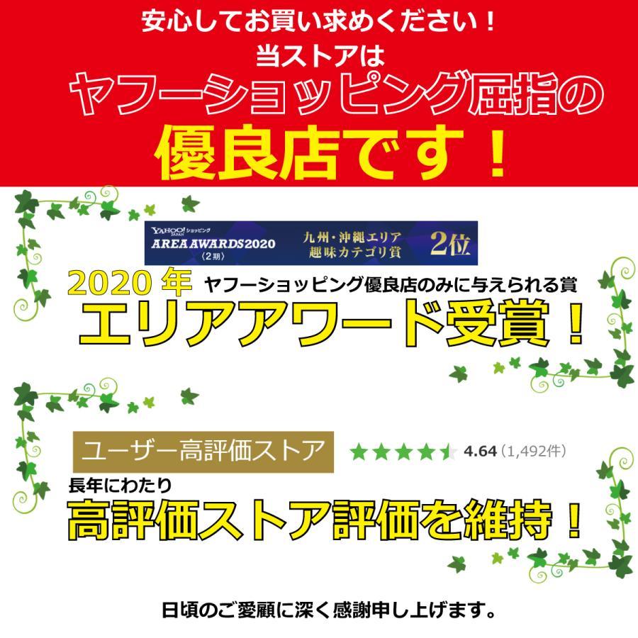 ワイヤレスイヤホン Bluetooth5.0 ハンズフリー|albert0051|02