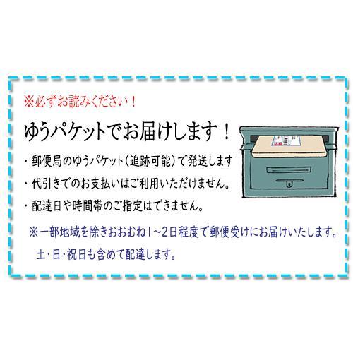 ピアス ハッピー キャッチ pierced catch シルバー 日本製 SV 925 アクセサリー パーツ  ひっぱらないと 外れない 落ちない 1ペア 新品 ゆうパケット 送料無料|alliegold|06