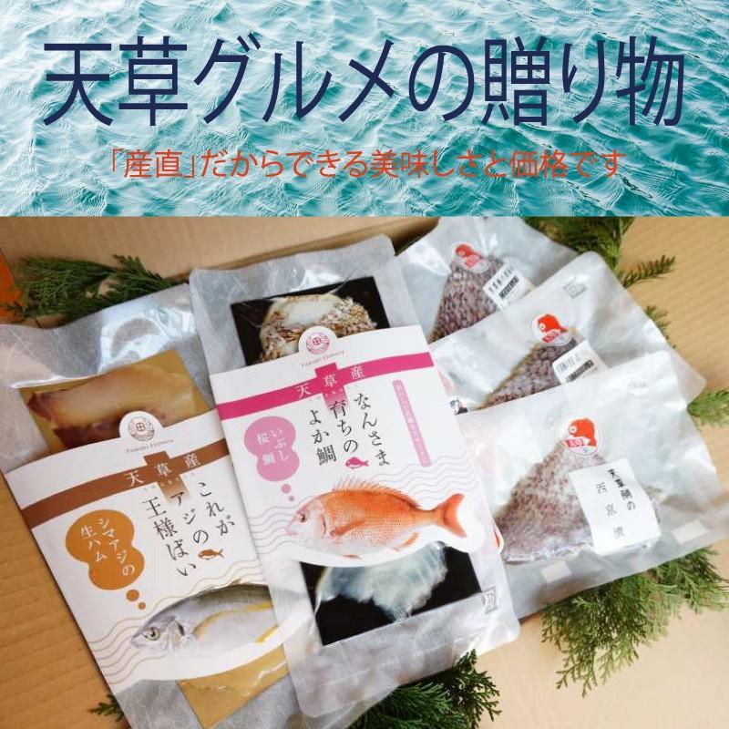 熊本 天草グルメ ギフト 特製「マダイとシマアジのごちそうセット」|amakusa-gourmet