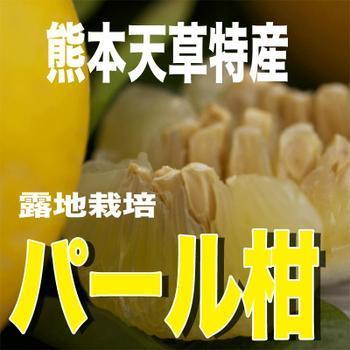 天草産「訳あり」パール柑10kg箱入り|amakusaichiba