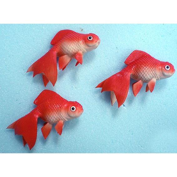12cm金魚 6匹入り(魚/フェイク/食品サンプル 食品模 キンギョ ...