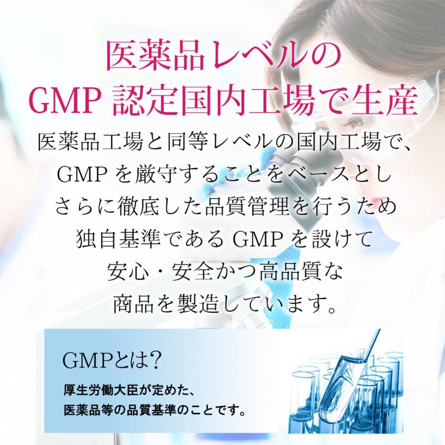 高品質 プラセンタ サプリメント Plange プランジュ 2袋セット 美肌 美容サプリ 公式 送料無料 乳酸菌 コラーゲン ヒアルロン酸 ビタミンE 30日分 日本製 ange-selectshop1 07