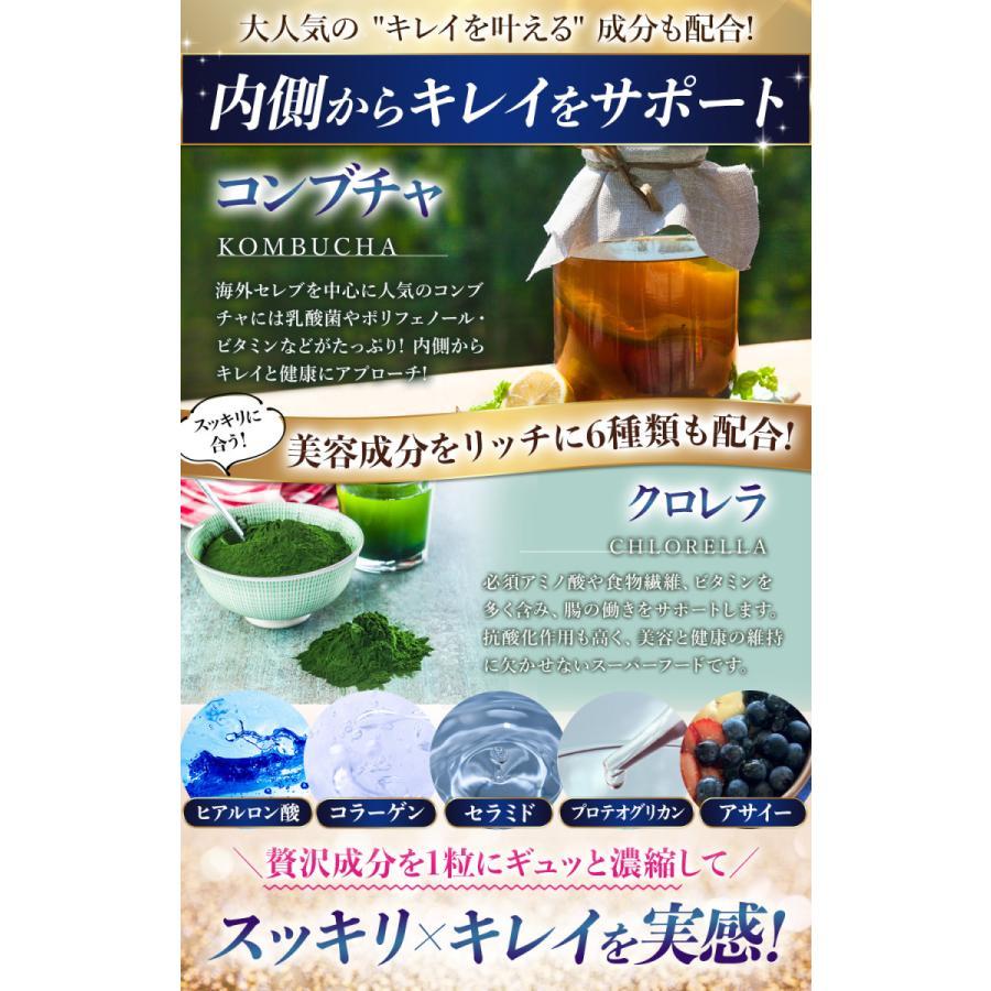 27種6兆個 乳酸菌配合 腸活 サプリメント リッチな菌たち ダイエット 酪酸菌 コンブチャ 穀物麹 オリゴ糖 キトサン ラクトフェリン 痩せ菌 日本製|ange-selectshop1|08
