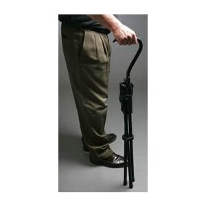 Pleasing The From Stool Cane Chair Walking Stadium Portable By Pabps2019 Chair Design Images Pabps2019Com
