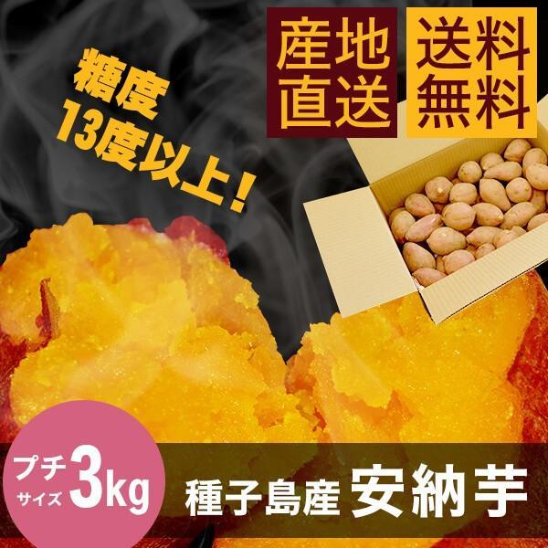 安納芋3kg【プチサイズ】