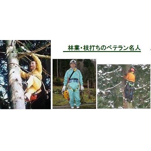 木登り器「FR-100」の昇降時の足金具 ツヨロン |anyoujiya-1|03