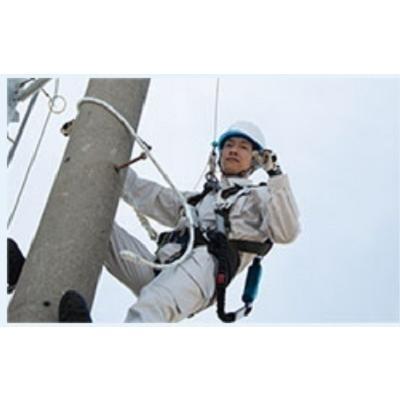 TD柱上安全帯「WP-TD-27-BL2-M」胴・補助ベルト ワイヤー無ランヤード フックFS101-2|anyoujiya-1|06