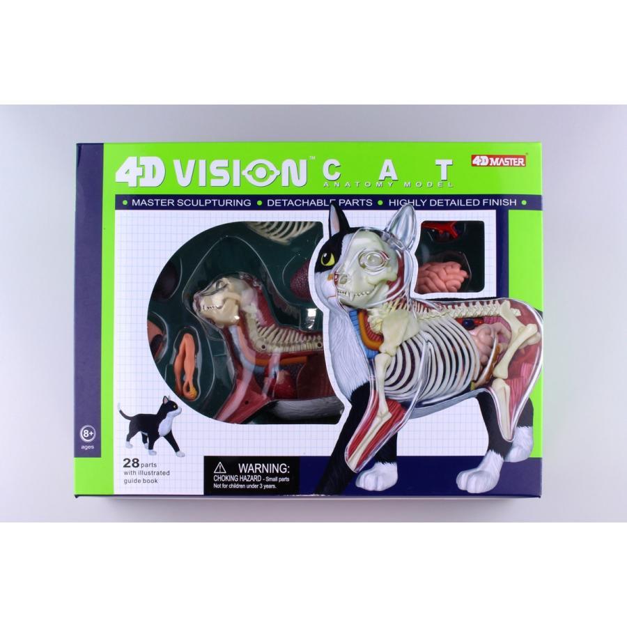 猫解剖モデル 黒/白  4D VISION 動物解剖モデル No.29 #立体パズル|aoshima-bk|14