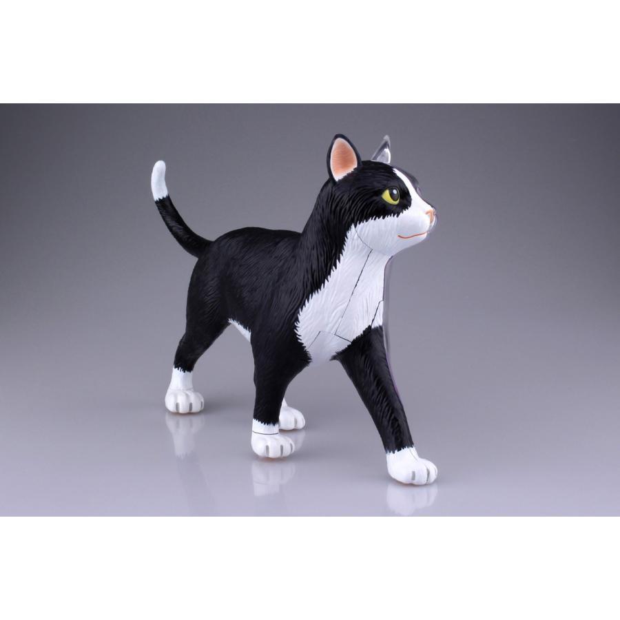 猫解剖モデル 黒/白  4D VISION 動物解剖モデル No.29 #立体パズル|aoshima-bk|06