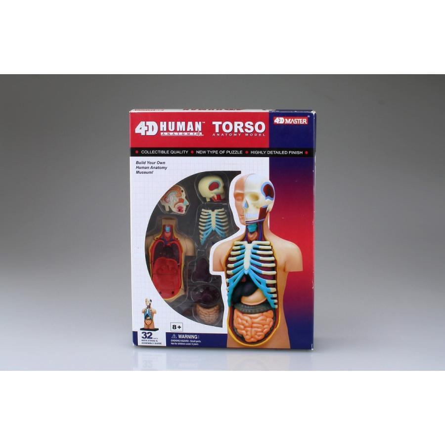 胴体 解剖モデル 4D VISION 人体解剖モデル No.1 #立体パズル aoshima-bk 09