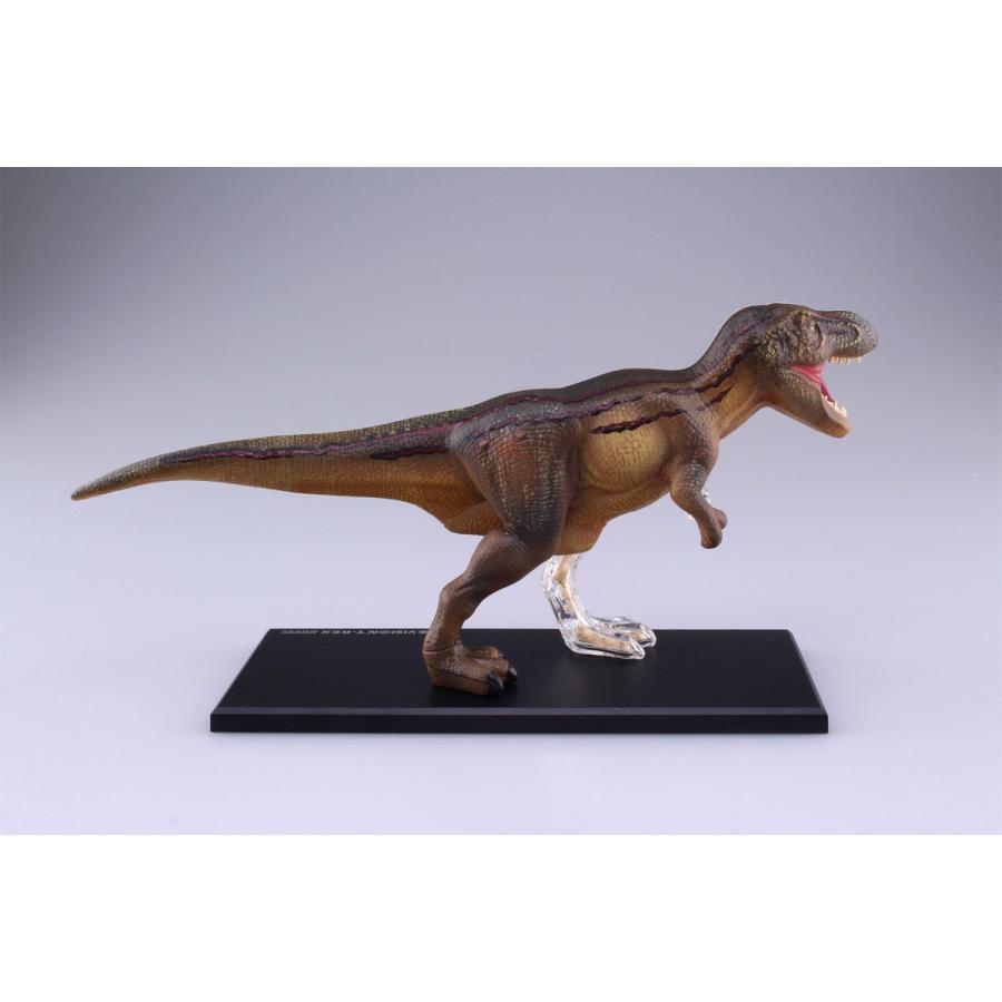 T−REX 解剖モデル 4D VISION 動物解剖モデル No.22 #立体パズル|aoshima-bk|04