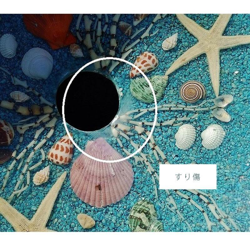 アウトレット 訳あり 貝殻の洗面ボウル 楕円 オーバル 貝殻 リゾート風 樹脂製 洗面ボウル apoa 04