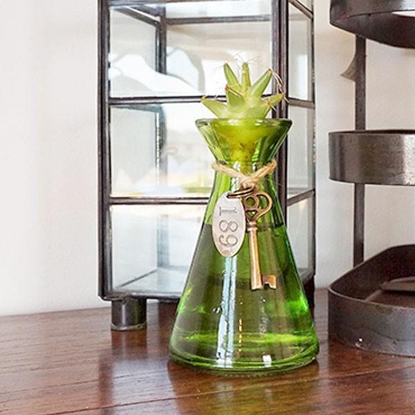 水耕サボテン 水耕栽培 フラスコ瓶 チャーム付き ガラス 多肉植物 ギフト プレゼント apoa 02