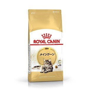 ロイヤルカナン メインクーン 成猫用 2kg|aquabase
