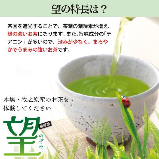 お歳暮 お茶 緑茶 茶葉 プレゼント ギフト 水出し緑茶 静岡茶 カテキン 高級茶 望金印3袋箱入 送料無料|arahata|06