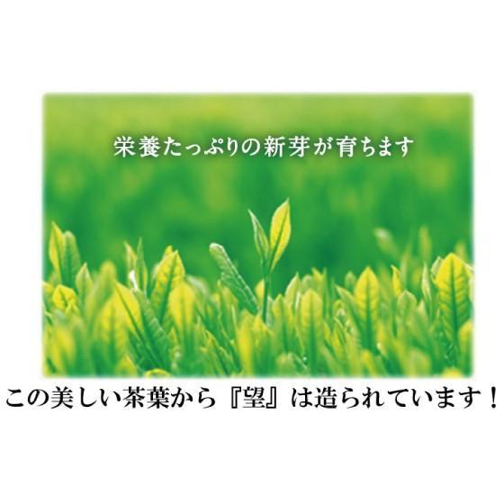 お茶 緑茶 静岡茶 カテキン 牧之原ブランド茶 望 銀印 100g 3袋に1袋おまけ 送料無料|arahata|15