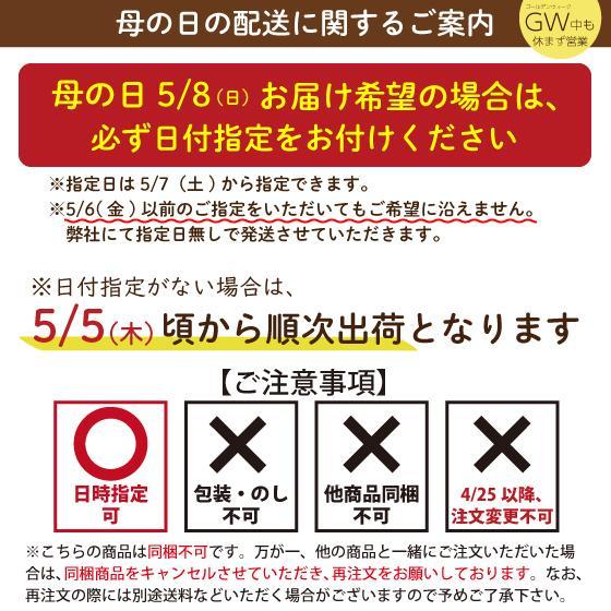母の日 2021 新茶 お茶 ギフト プレゼント 緑茶 送料無料 母の日1袋セット arahata 10