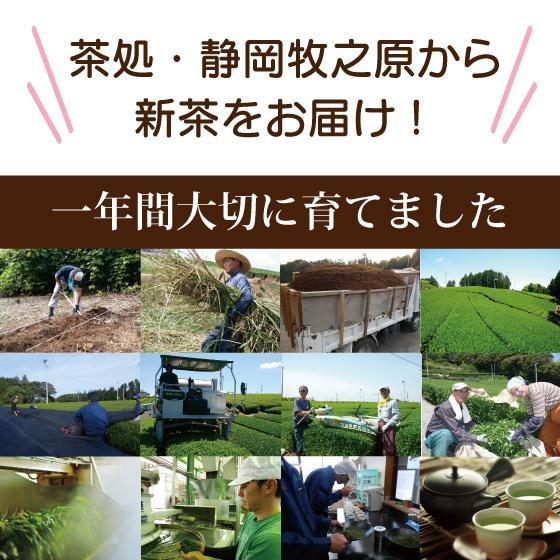 母の日 2021 新茶 お茶 ギフト プレゼント 緑茶 送料無料 母の日1袋セット arahata 09