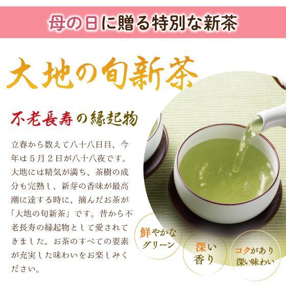 母の日 2021 お茶 新茶 ギフト プレゼント 緑茶 母の日2本箱入り 送料無料|arahata|07