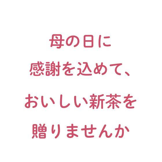 母の日 2021 お茶 新茶 ギフト プレゼント 緑茶 母の日2本箱入り 送料無料|arahata|08