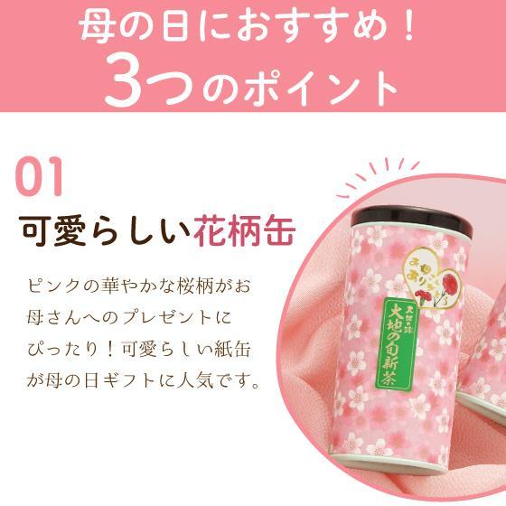 母の日 2021 お茶 新茶 ギフト プレゼント 緑茶 母の日2本箱入り 送料無料|arahata|09